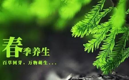 香港林淦生,九叶网,甜性涩爱土豆网